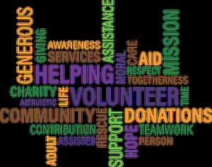 volunteer-1326758__340-300x236